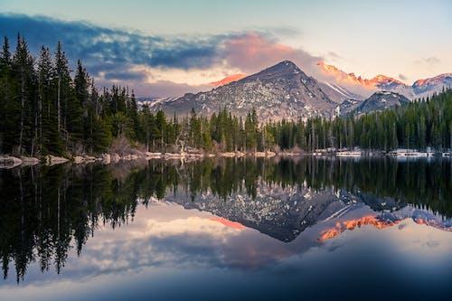 Ảnh lưu trữ miễn phí về bình minh, bờ hồ, cây lá kim, con sông