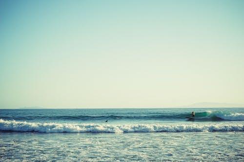 Základová fotografie zdarma na téma mávání, moře, pláž, surfaři