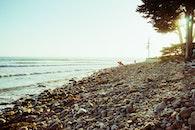 sea, beach, vacation