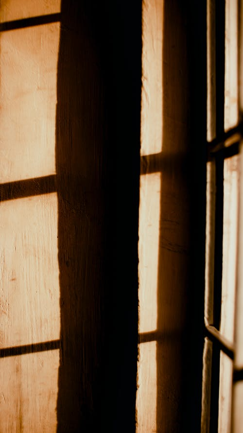 Shadow of grid of window on wooden wall in house on sunny day