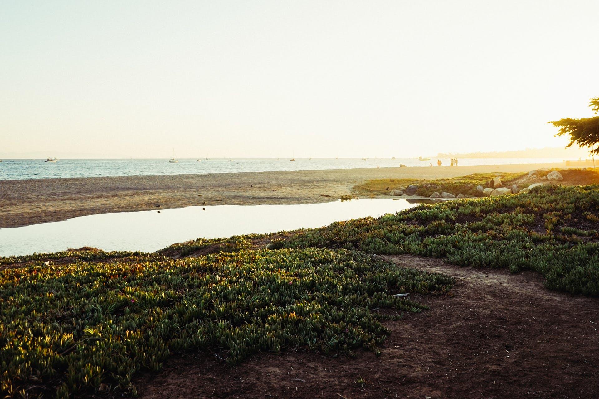 deniz, deniz kıyısı, deniz manzarası