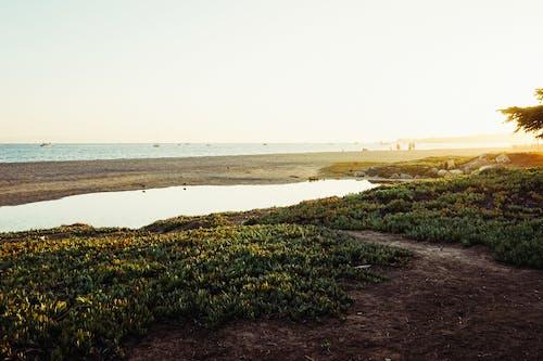 シースケープ, ビーチ, 池, 海の無料の写真素材