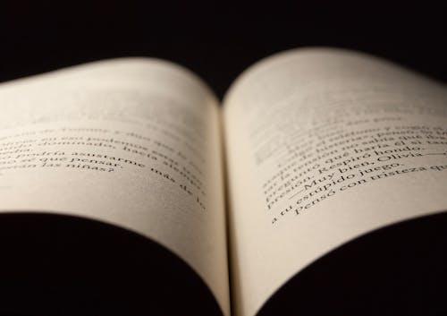 Free stock photo of letras, libro, libro abierto