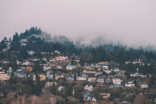 Old house facades on mountain with trees in fog