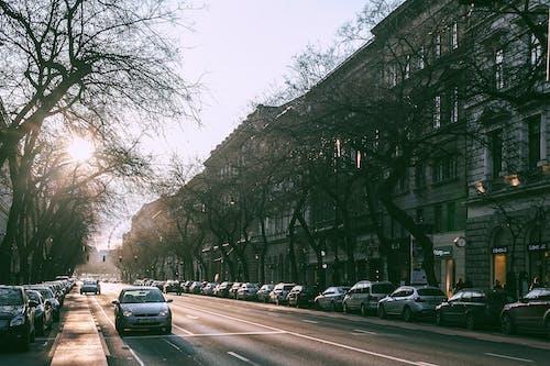 Základová fotografie zdarma na téma architektura, asfalt, auto, automobil
