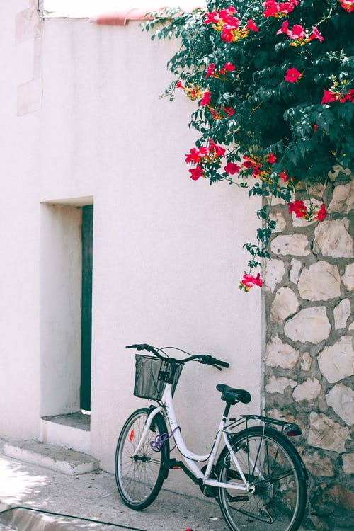 Exterior of old stone house with flower shrub on wall and urban bicycle on city street