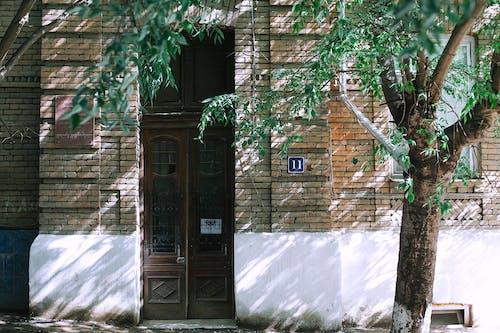 ağaç, ağaç gövdesi, ahşap, apartman içeren Ücretsiz stok fotoğraf