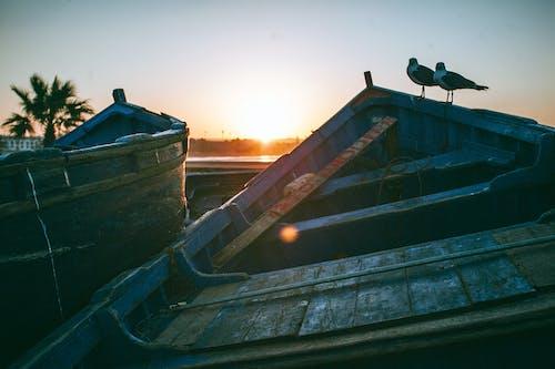 Бесплатное стоковое фото с безоблачный, берег, вода, горизонт