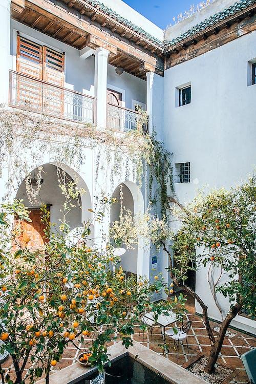 Безкоштовне стокове фото на тему «Арка, архітектура, балкон»