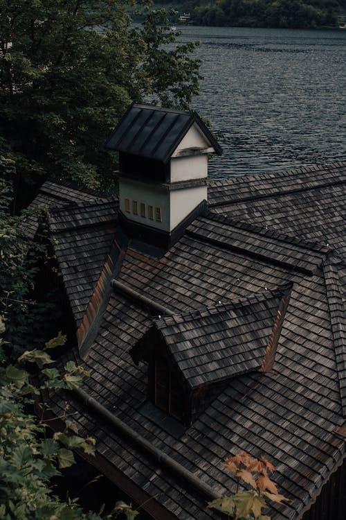 Immagine gratuita di acqua, albero, architettura, bungalow