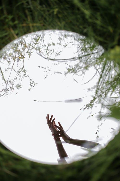 Základová fotografie zdarma na téma anonymní, bez tváře, bylinky