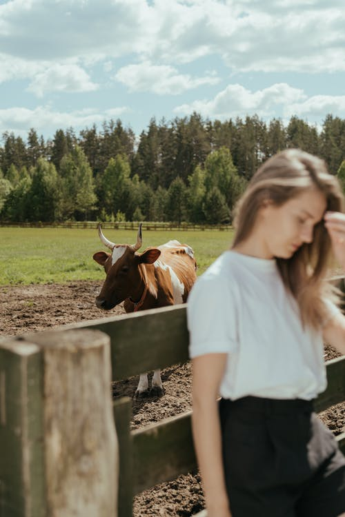 Woman in White T-shirt Standing Beside Brown Cow