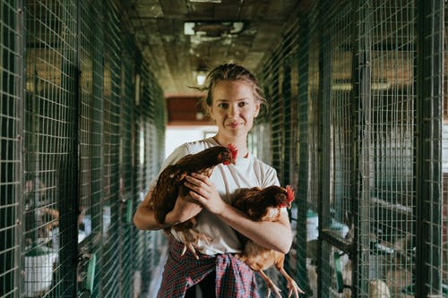 Girl in Red and White Dress Holding White and Black Chicken