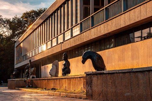 Безкоштовне стокове фото на тему «julius nyerere, Галерея, зімбабве»