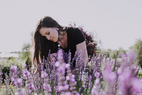Woman in Black and White Shirt Standing on Purple Flower Field