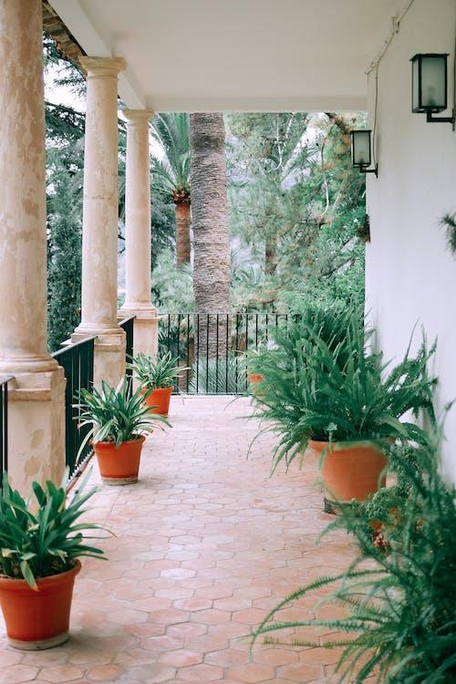 Kostenloses Stock Foto zu architektur, außen, badeort, balkon