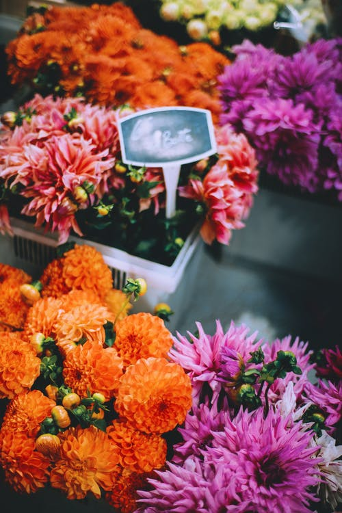 From above of fresh bright arrangement of orange and purple flowers placed in plastic containers on floor in modern floral shop