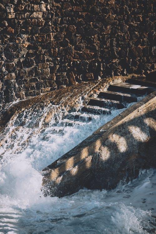 垂直, 堤, 夏天, 夏季 的 免費圖庫相片