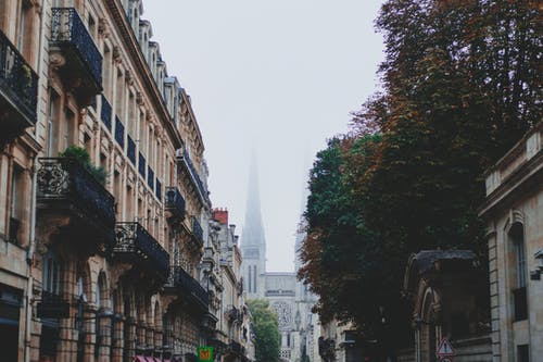 Old street with residential buildings with balconies and tree located in city with medieval cathedral with spires in distance on foggy day