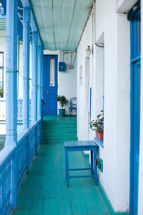 Деревянная терраса с лестницей и горшечными растениями