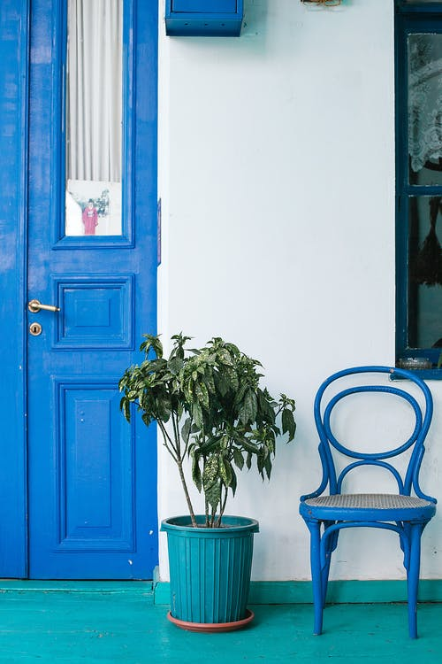 Potted plant near doorway and chair