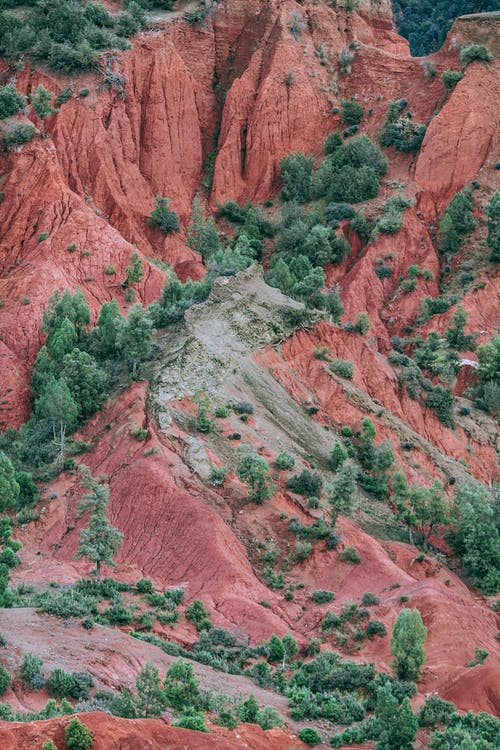 Rough rocky terrain with green plants