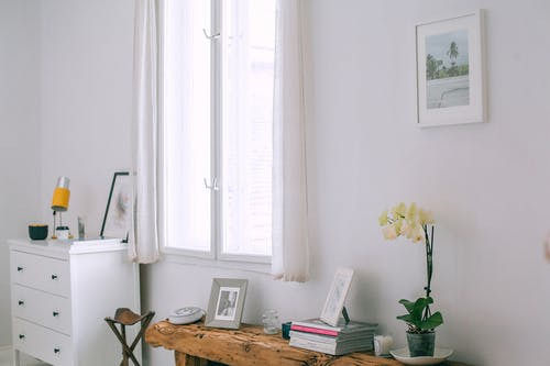 Interior of cozy room with photo frames and flowerpot placed on wooden counter near white wall with picture and window