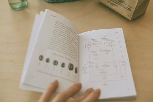 From above of crop anonymous person showing open book with illustration of coffee beans and scheme with text on pages