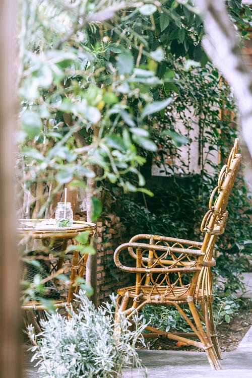 Wicker armchair near table in garden with assorted plants