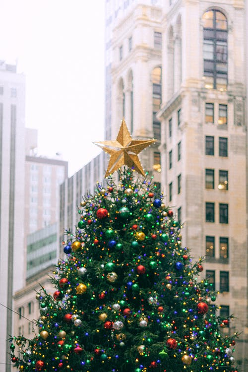 Green Christmas Tree With Gold Star Ornament