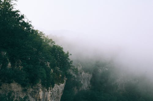Breathtaking scenery of rough rocky mountains covered with green trees hidden under thick foggy sky
