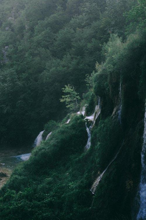 Foamy waterfalls in mounts with lush trees