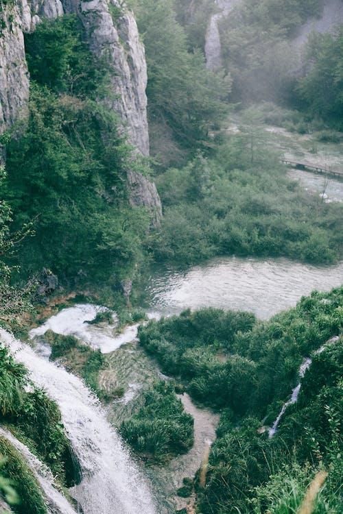 Thác Nước Chảy Xiết Trên đỉnh Cao Gần Ao
