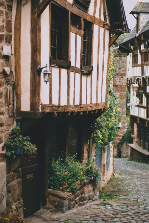 Narrow cobblestone passage between old authentic wooden houses with timber framing decorated with lush potted plants in daylight