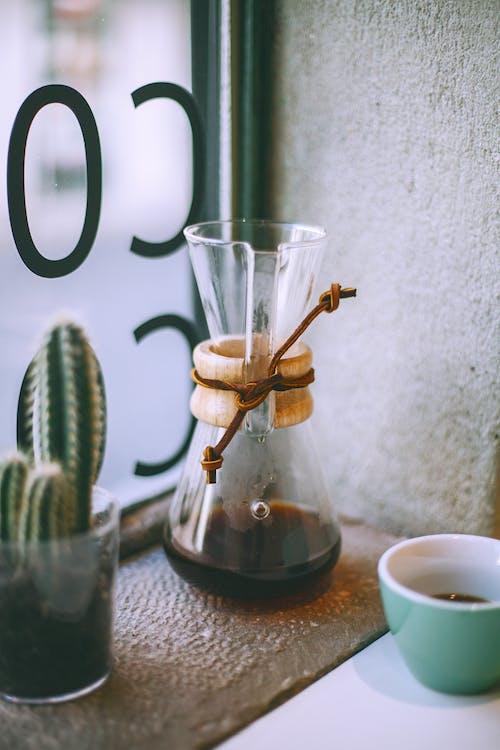 Drip coffee maker near cactus on windowsill
