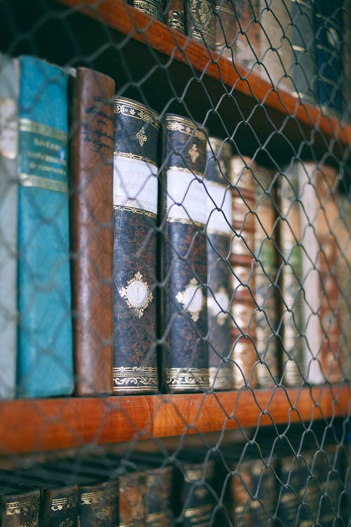 Assorted books with illustrations on covers on wooden bookshelves behind fence in museum library