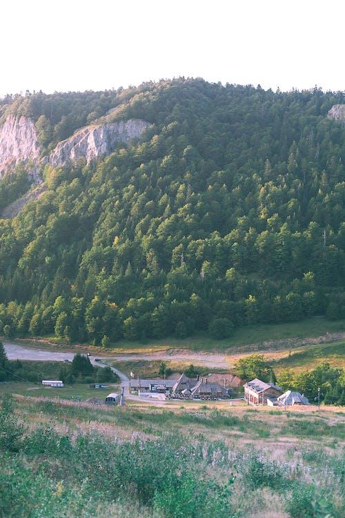 Small village in green mountainous terrain
