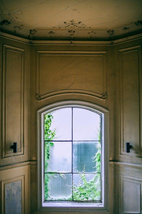 Interior De Apartamento Clásico Con Elementos Ornamentales.