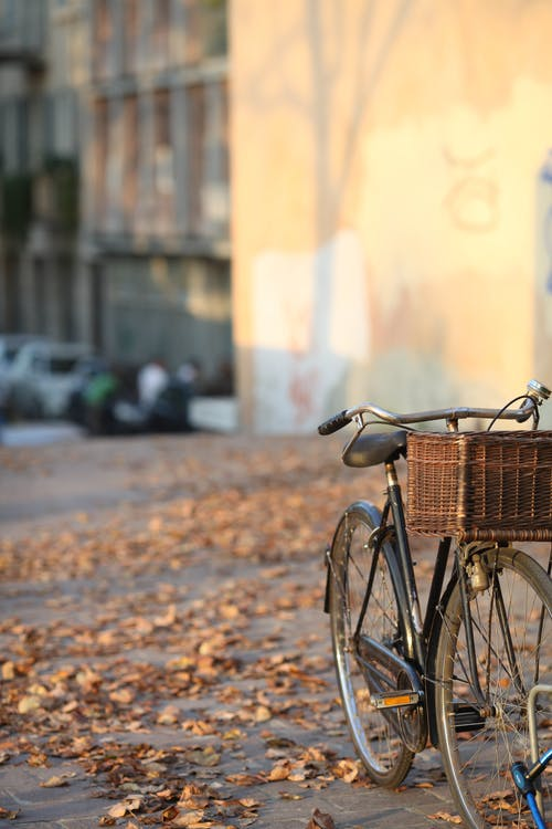 Bicycle parked on town street covered with fallen autumn leaves