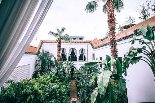 White mansion patio with lush topical trees