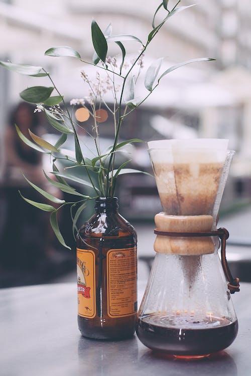 Chemex coffee on table near plant stem in jar