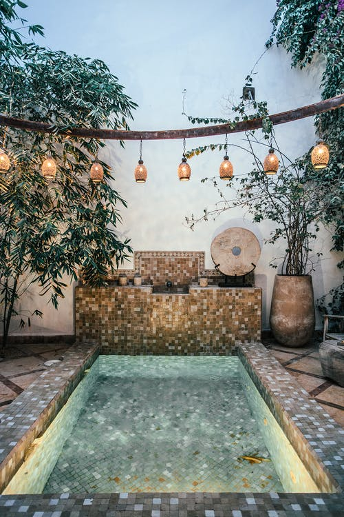Interior of vintage patio decorated with plants in pots and green exotic trees with pool decorated with ornaments in summer time