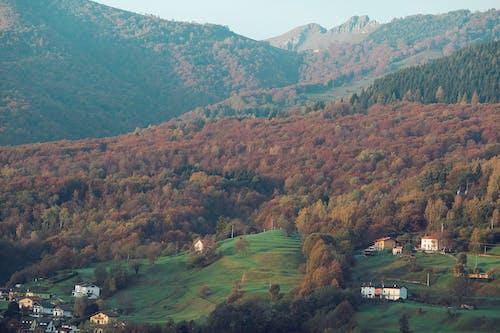 Picturesque view of mountainous area in autumn