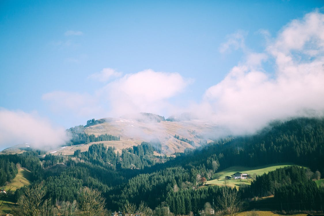 Mountain with lush trees under blue cloudy sky in fog