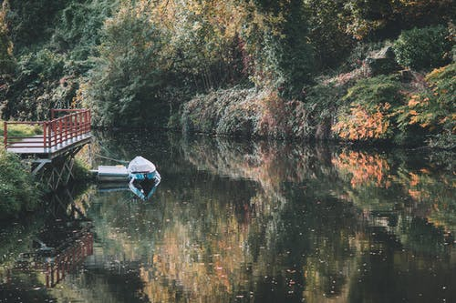 緑豊かな秋の森に囲まれた湖に係留されたボート