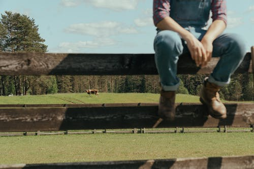 Person in Pink T-shirt and Blue Denim Jeans Standing on Green Grass Field