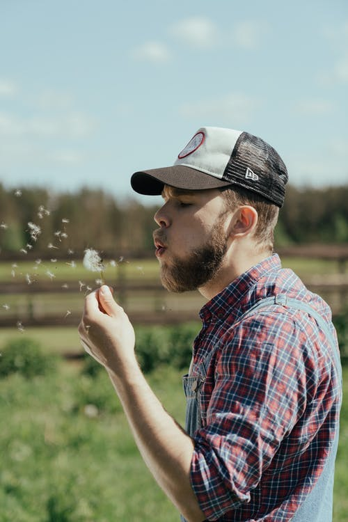 Free stock photo of agriculture, bearded man, cap, checkered shirt