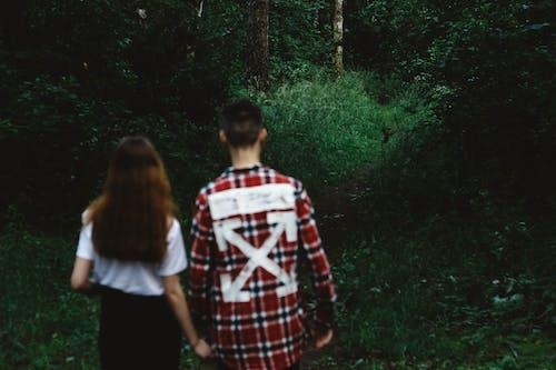 Kostnadsfri bild av flickvän, grön, kärlek, natur
