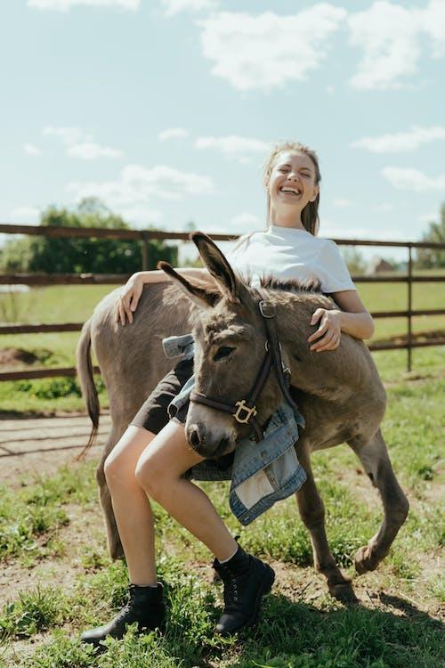 Δωρεάν στοκ φωτογραφιών με αγκαλιά, αγκαλιάζω, αγρόκτημα