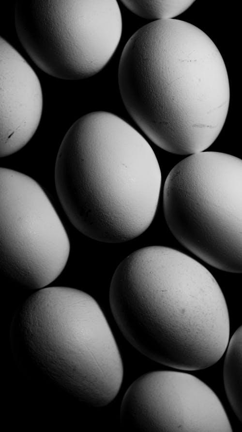 가금류, 계란, 계란 껍질, 계란 노른자의 무료 스톡 사진